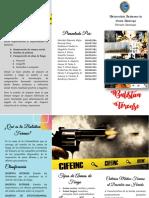 Balistica Forense (Brochure)