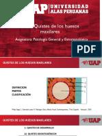 Patología General y Estomatologica. Semana 10