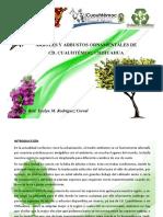 Catalogo de Arboles y Arbustos.