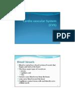 CVS Final 4 (Blood Vessels)