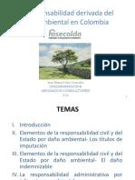 1 - Presentacion Responsabilidad Ambiental-juan Manuel Diaz-granados