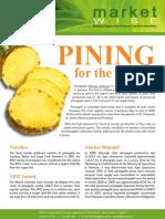 Marketwise Pineapple