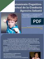 Conducta Agresiva Infantil