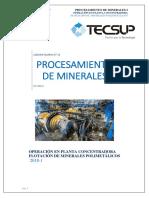 Pcm Lab13_flotación de Minerales Polimetálicos_1 (1)