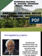 ECOSISTEMAS__AMAZONICOS_1