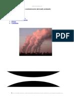 contaminacion-del-medio-ambiente.doc