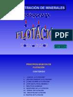 Cinética y Variables Del Proceso de Flotación