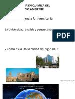 La universidad análisis y perspectivas