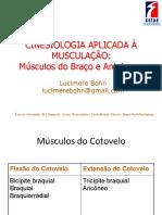 Cinesiologia Aplicada à Musculação_ Músculos Do Braço e Antebraço