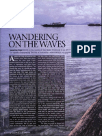 Wandering on the Wave