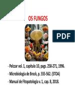 Aula Fungos - Parte I