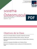 Sistema Osteomuscular2.docx