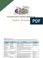 PLANIFICACIÓN MICROCURRICULAR INICIAL 2 final FINAL.DOCX