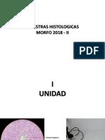 MUESTRAS HISTOLOGICAS (1)