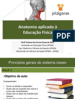 ANATO Aula 2.2 Princípios gerais do sistema ósseo.pdf
