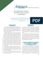 23 o Ecografia Del Sistema Genitourinario Normal y Patologico