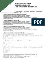 Modelo de Segundo Parcial Multiple Choice Nro 1 Neurofisiologia Preguntas de Tps Catedra 123