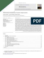 Mitochondrial Metabolism of Reactive Oxygen Species
