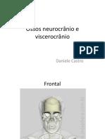 Apresentação Ossos Neurocrânio e Viscerocrânio