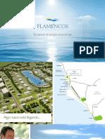brochure flamencos
