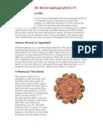Bacteriophage-phiX174