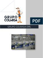 A Grupo Colmiga Eirl 2017