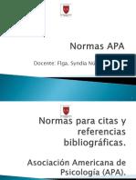 Normas Apa LSE 2013