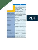 Formato Proceso v1