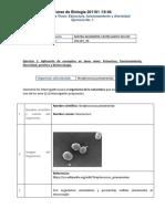 Formato Poa - Ejercicio 1 y 2_ Mayra Castellanos