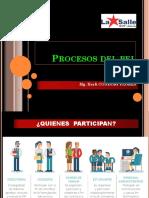 Procesos Del Pei