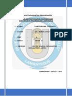 2INFORME-DE-PRÁCTICAS-OGBU-SERVICIO SOCIAL.docx