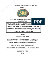 Eulogio Hinostroza-Matos Sanchez.pdf