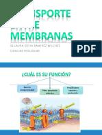 4. TRANSPORTE ENTRE MEMBRANAS.pdf