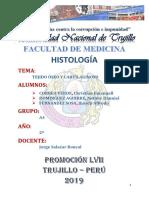 INFORME TEJIDO CARTILAGINOSO Y OSEO.docx