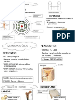 COMPLEMENTO-2