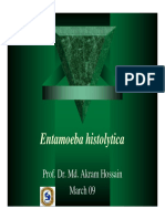 Entamoeba Akram
