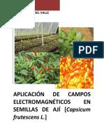 semillas aji.pdf