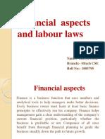 Entrepreneurship financial aspect and labour law