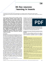 Giurfa (2013) Cognition With Few Neurons- Higher-Order Learning in Insects