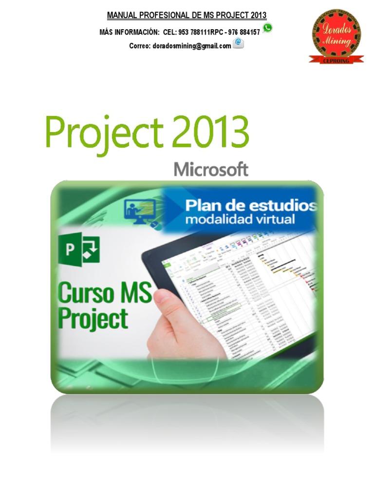 Manual Microsoft Project Professional pdf