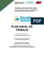 plan anual JEF 1.docx