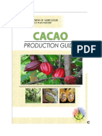 Cacao Production Guide