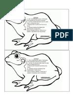Animales Vertebrados Para Pegar Características Resumen
