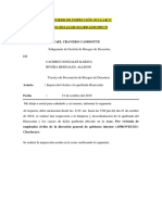 INSPECCION DE QUEBRADA HUASCARAN. terminado..docx