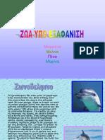 zoa_exafanisi-3-e-2o