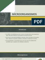 MICROORGANISMOS.pptx