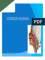 Estridor neonatal.pdf