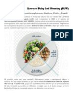 BLWGuiaBasica.pdf
