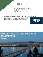 6230_investigacion_cientifica_de_los_delitos_sexuales_2.pdf