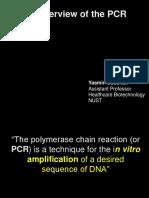 1. PCR (1)